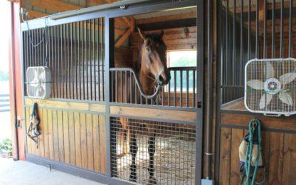 Equestrian Stalls
