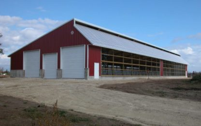 Metal Cattle Barn with Skylights